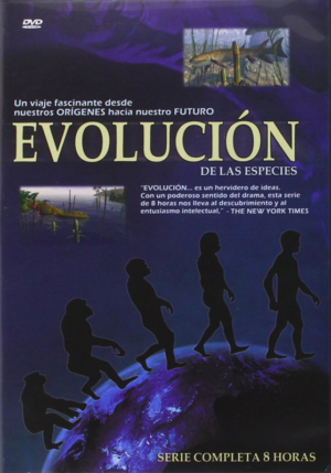 evolucion serie tv dvd