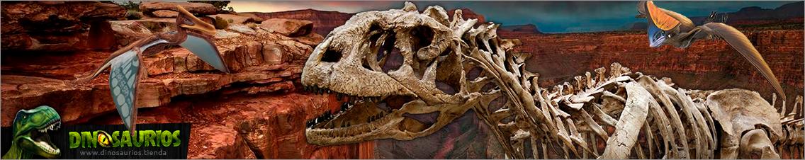 Kits de paleontologia experimental