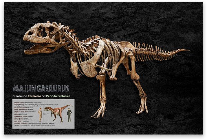 poster de dinosaurio majungasaurus